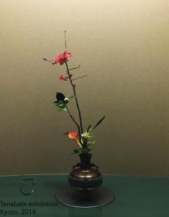 Tatehana à l'exposition Tanabata à Kyoto